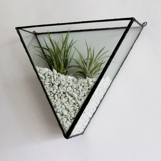 plantele-de-aer-un-nou-trend-in-designul-de-interior-10
